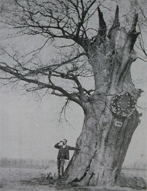 This tree was the last living witness of the bokkenrijder history. The legend says that they gathered here and that the cavity in the tree that was so large that one could put in a table to which four people could sit. This oak (in Kortessem) dated from around 800 and was just about the oldest tree in the country. In 1859 this tree after a heavy autumn storm was torn in half.